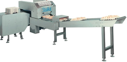 Egg Grading & Packing Machinery