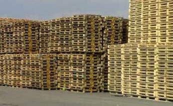 לקנות משטחי עץ פיקדון