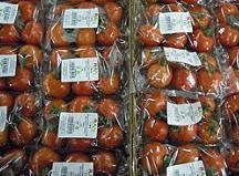 לקנות Tomato