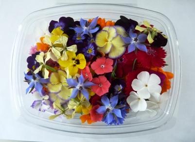 לקנות Edible Flowers