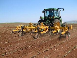לקנות Row Crop Cultivator