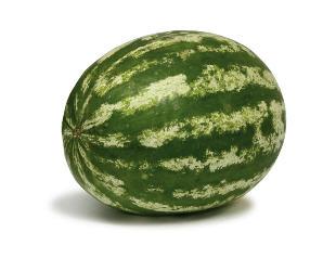 """לקנות """"All sweet"""" big seeded watermelon"""