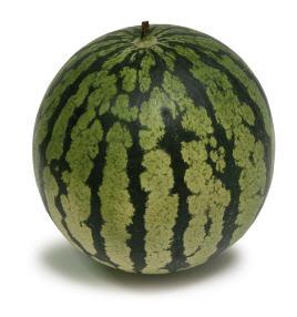 לקנות The Mini seeded watermelon with tiny seeds