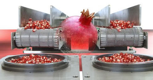 לקנות ArilSystem™ - The Innovative Pomegranate Arils Extraction System