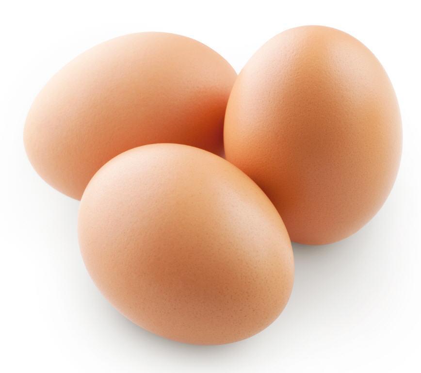 לקנות ביצים מפוסטרות