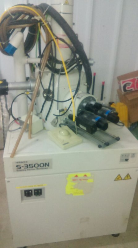 לקנות מיקרוסקופ סורק אלקטרוני