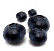 Buy Fresh berries