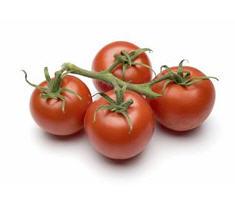 זרעי עגבניות