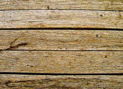 פלטות עץ
