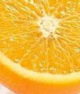 תפוזים ופירות הדר