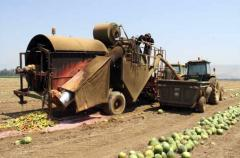 Watermelon Harvester & De-Seeder