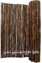 גדר במבוק דגם ערבה