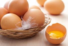 מוצרים ביצים קפואים
