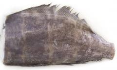 דג הליבוט