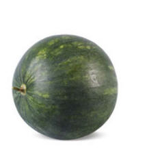 Mini Seedless Watermelon seeds