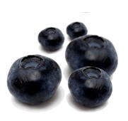 פירות יער אוכמניות